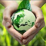 """Santa Sede promueve un """"movimiento masivo"""" para cuidar el planeta"""
